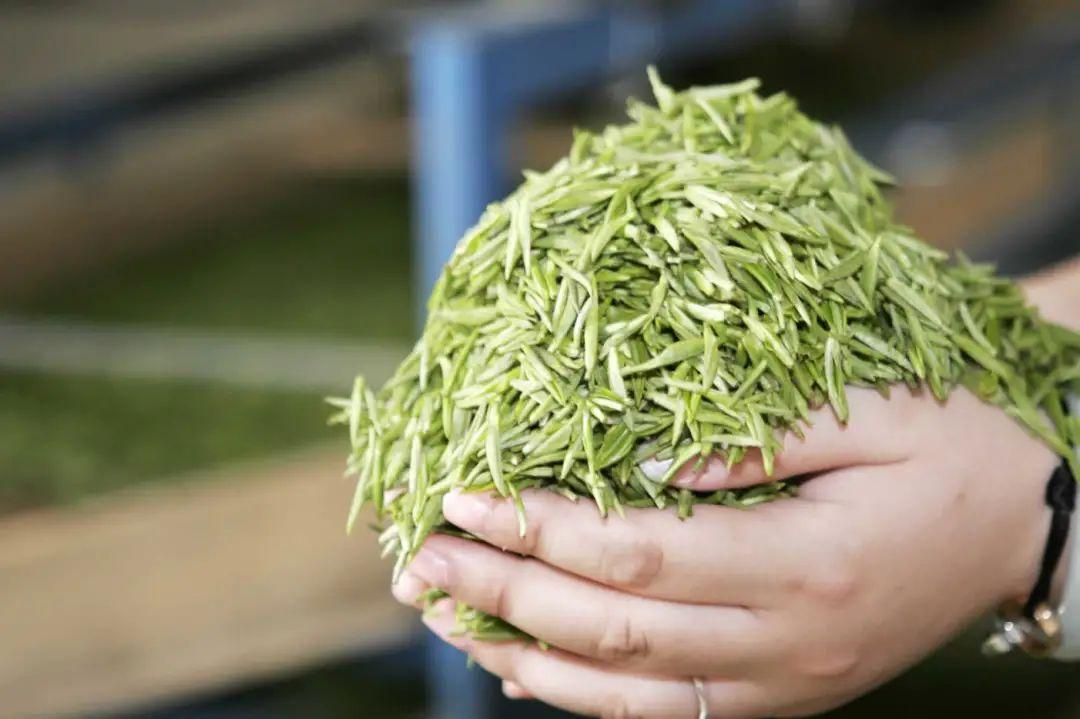 盘点中国那些天价茶,最贵的仅存两沱