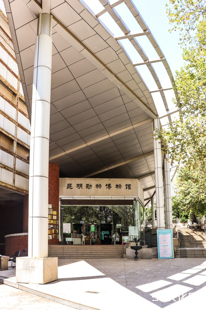 昆明动物博物馆