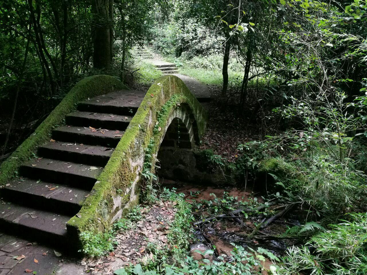 紫溪山森林公园
