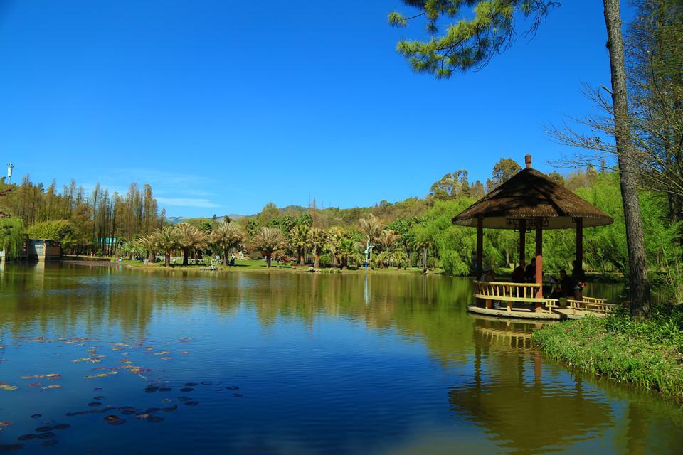 昆明植物园