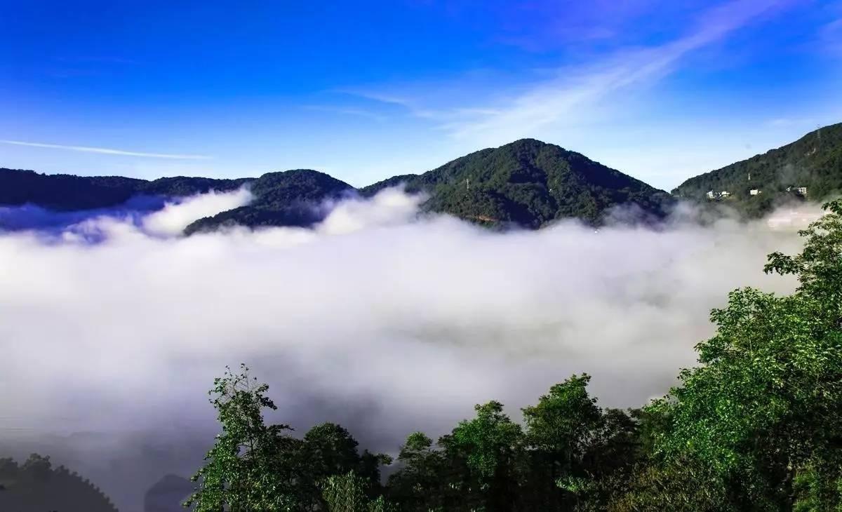 无量山自然保护区