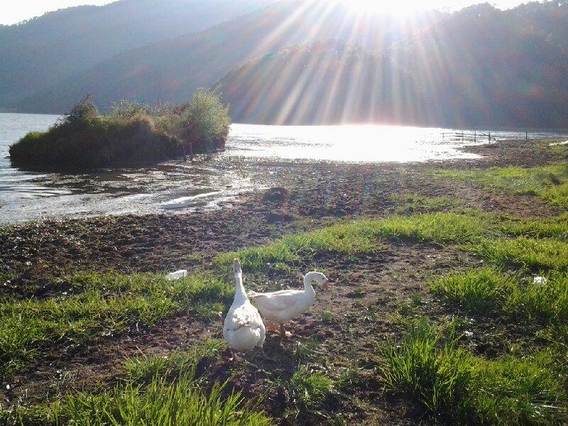 云南云龙天池国家级自然保护区